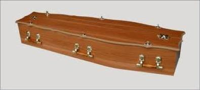 Coffin for hire for Halloween