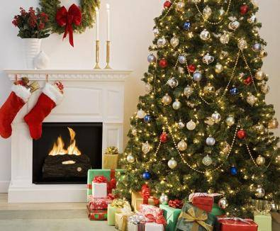 Christmas trees and decorations for your houses