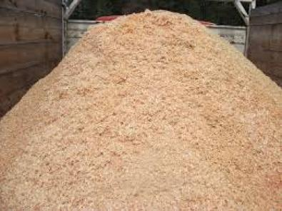 kiln pine shavings for sale