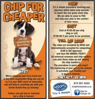 Chip your pets for Cheaper | Junk Mail