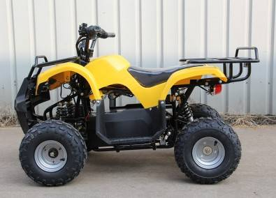 2019 Other Other (Trikes)