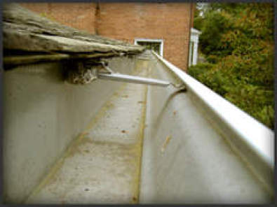 Gutter Cleaning & Painting Specialists