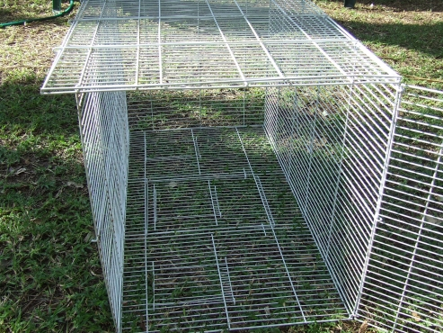 Foldable bird cage