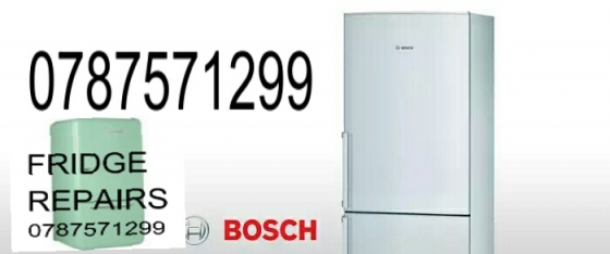 Bosch,  Samsung, Defy And All Fridge Repairs