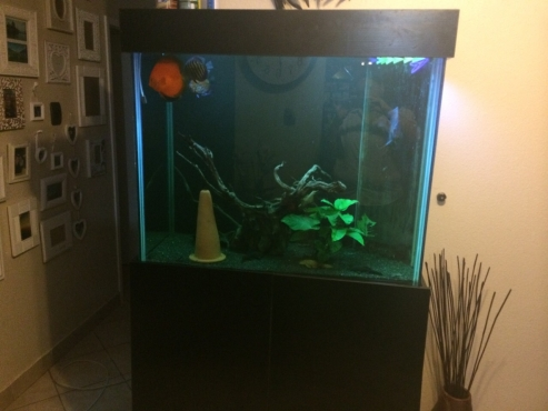 400L tank, sump, stand and cabinet