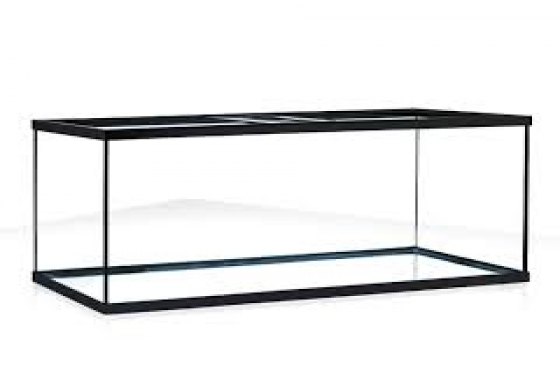 Long glass fish tank for sale
