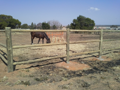 Ranch style fencing and gates