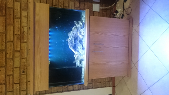 Marine Fish Tank for Sale with Extras URGENT