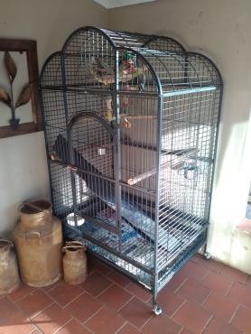 Extra Large African Grey Cage