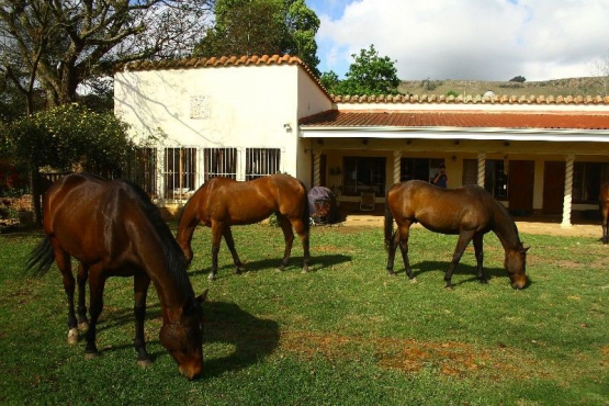 5 Bedroomed Farmstyle House Situated on 8.24 Hectares For sale