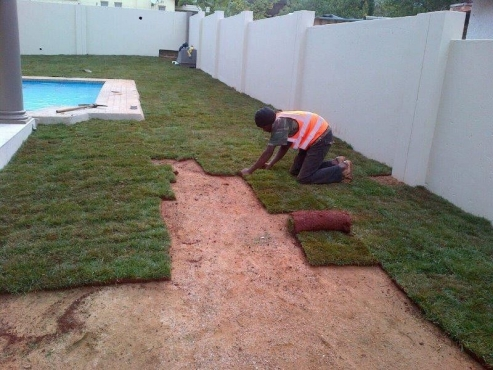 instant lawn & compost supply and laying, irrigation and landscape