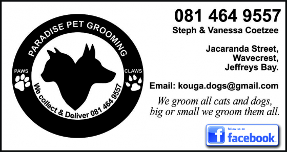 Paradise Pet Grooming Dogs