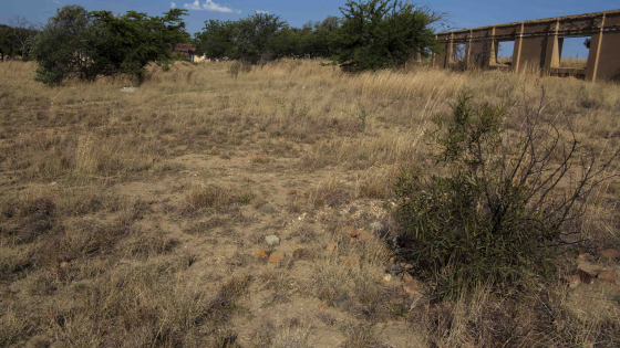 Beautiful  Plot in Laezonia, Centurion - ideal for Horse owners