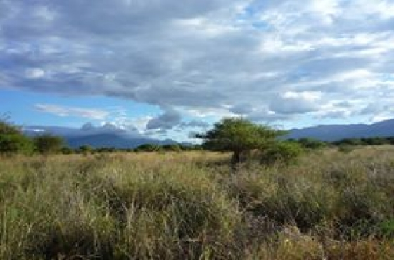 21 hectar land for sale in Hoedspruit