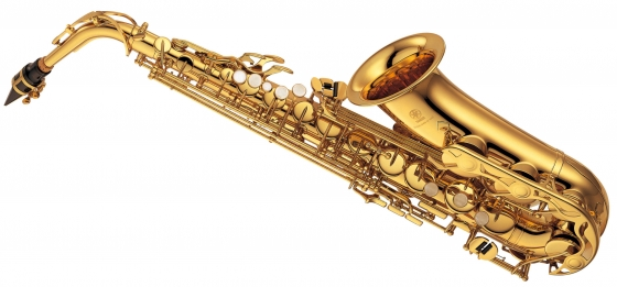 Saxophone and Clarinet overhaul and repair