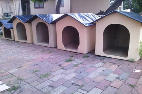 dog kennels/ all sizes
