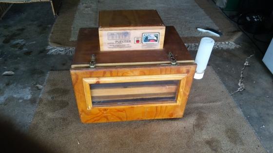 Electronic incubator