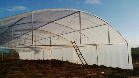 Greenhouses For Sale  0623927267 Western Cape