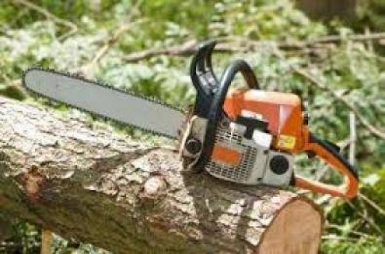 Randburg Tree Felling & Landscaping