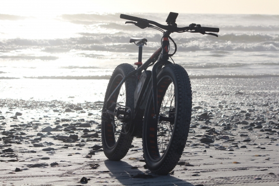 Electric Bikes   E-bikes South Africa   Chilled Squirrel   Electric Bicycles   Electric Fat bikes