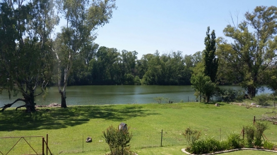 Beautiful plot next to the Vaalriver in the Parys vacinity.