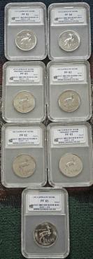 Complete 1977 to 1983 SANGS graded Nickel R1 proof set - Hern's value R80000-00