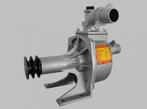Pedastal Water Pump
