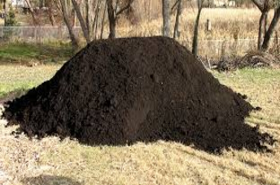 Topsoil, Tree Felling, Stump Removal, Cheap Compost, Lawn Dressing,Rubble Removals-Call-0849765079