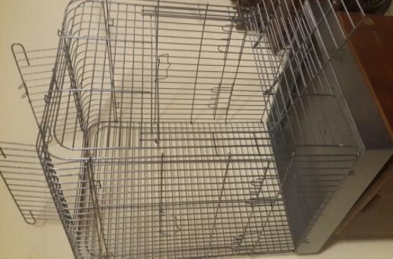 African Grey Parrot Cage Feluxe