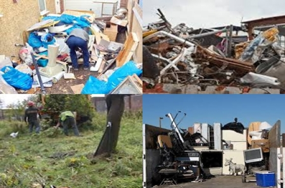 Removals - all sorts , Tree cutting , yard and house cleanups , demolision