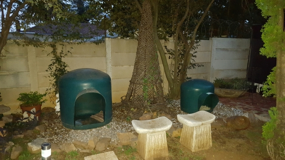 Dog kennels igloo 1 x large 1 x medium green