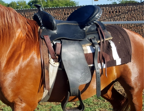 Jesse James saddle for sale