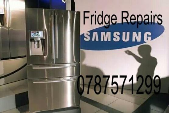 Samsung, Defy And All Fridge Repairs