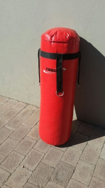 Trojan Punching Bag !!