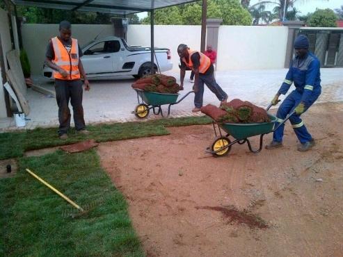 Allseason Instant Lawn deliver and plant kikuyu grass, LM grass & Lawndressing