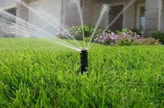 INSTANT LAWN AND IRRIGATION