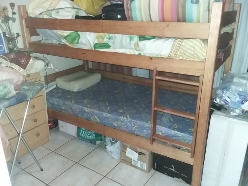 Bunk Beds Pine Wood Bargain R1500 Junk Mail