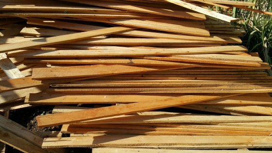 Saligna Wood For Sale At Unbeatable Pricing Junk Mail