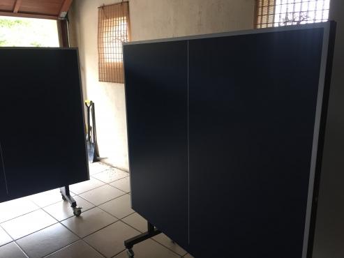 Dunrun table tennis table brand new
