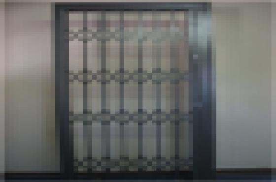 Window - Ultimate Fixtures / Trellis Doors - Premium