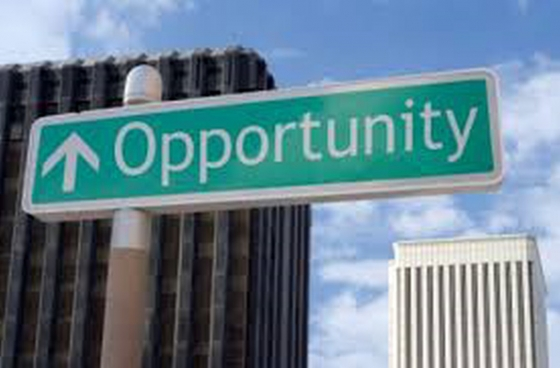 Business partner/investor opportunity