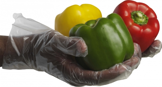DELI GLOVES  PAC of 100