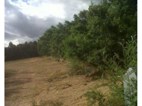 1HA VACANT LAND FOR SALE IN FIRLANDS