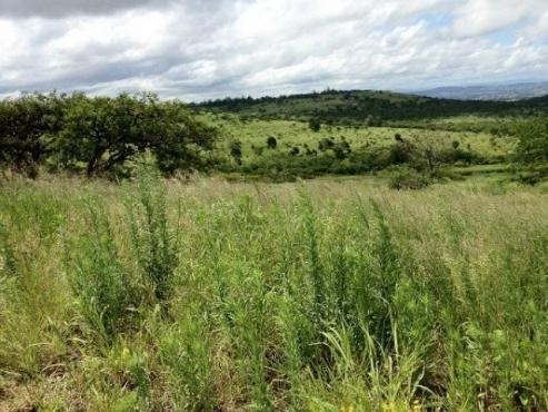 Vacant land for sale at Intaba Ridge estates