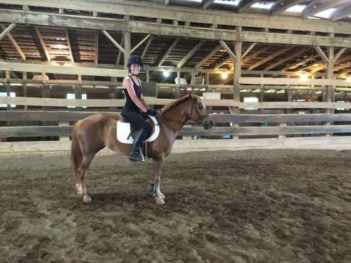 Point and Go, Easy Beginner's Pony