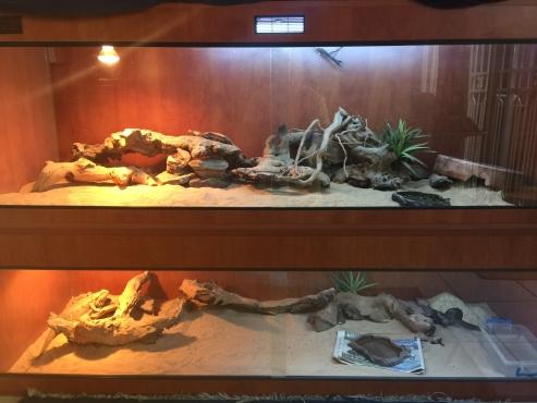 Enclosure, cherry wood