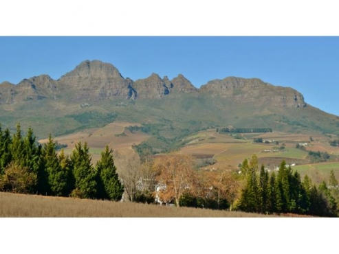 2HA SMALL HOLDING FOR SALE IN STELLENBOSCH