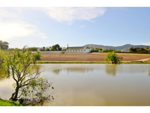 19HA FARM FOR SALE IN STELLENBOSCH