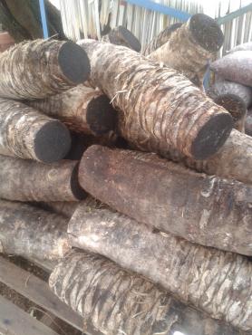 Nesting Logs (Sisal)