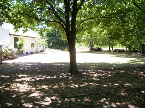 Luscious Green Export Fruit Farm For Sale Grabouw